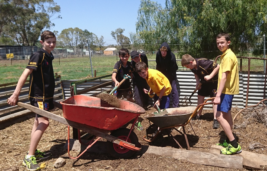 Students working at the Ag Farm