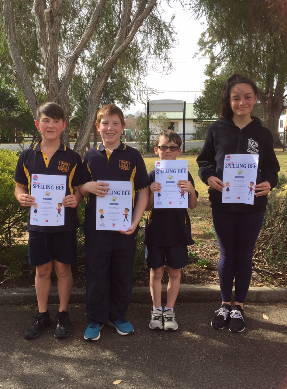 Students awarded certificates for making finals in Regional Spelling Bee