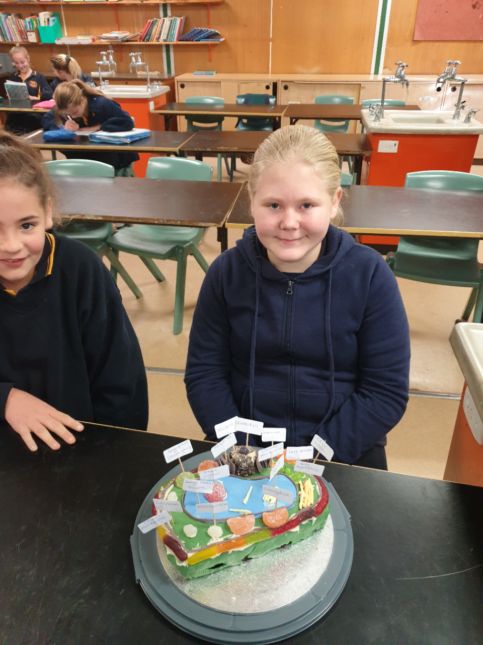 students with models of animal and plant cell